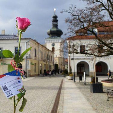 """""""Kwiatki Demokratki"""" czyli 8 Marca na Podkarpaciu"""