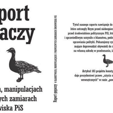 Raport Gęgaczy