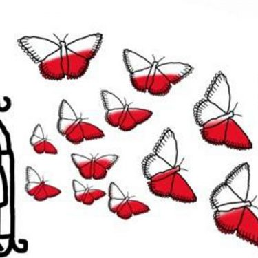 Motyl Wolności