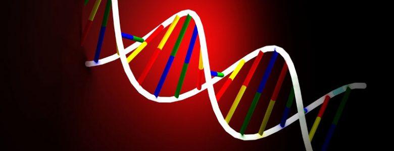 DNA a nacjonalizm